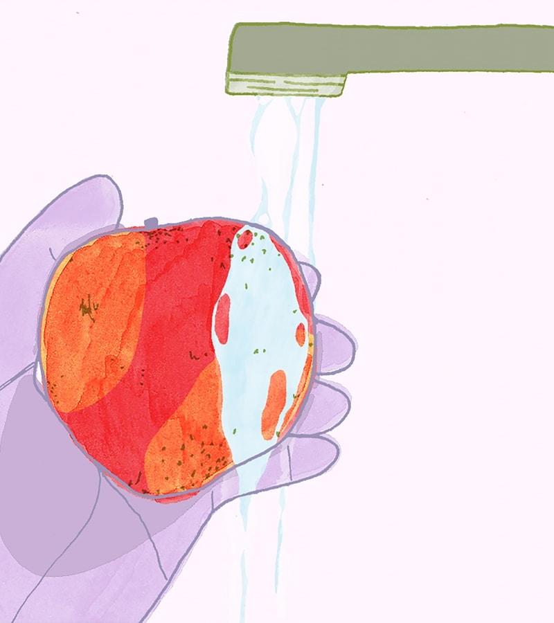 DIY produce wash illustration