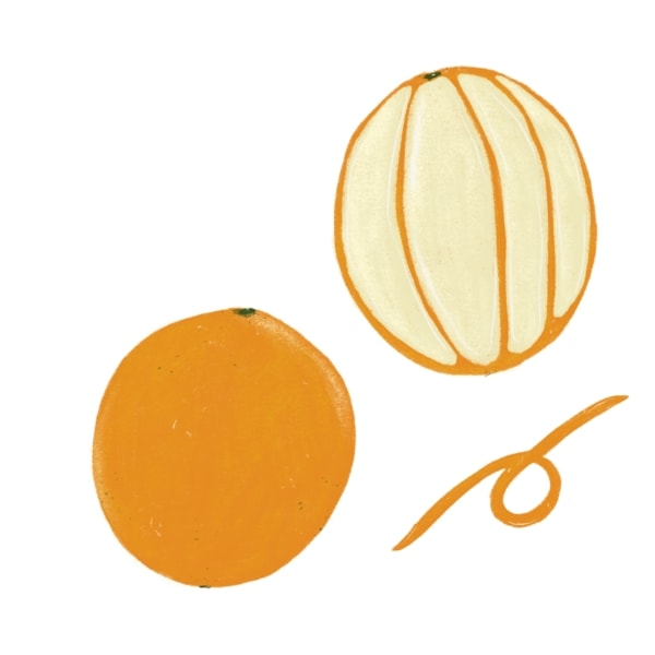peeled and whole orange illustration