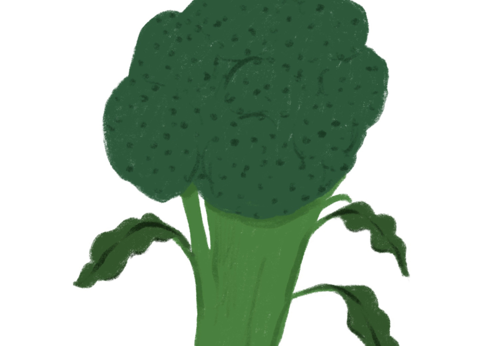 Features Broccoli