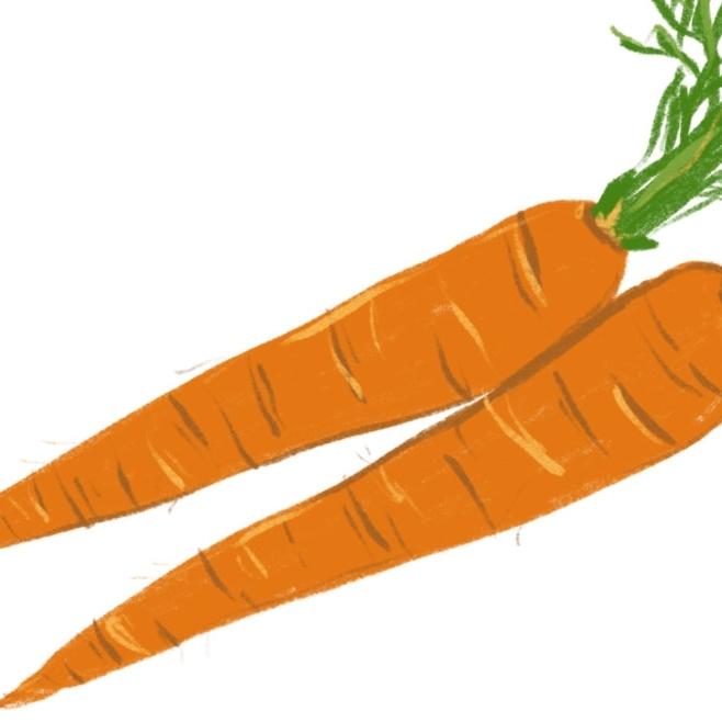 Shop Carrots