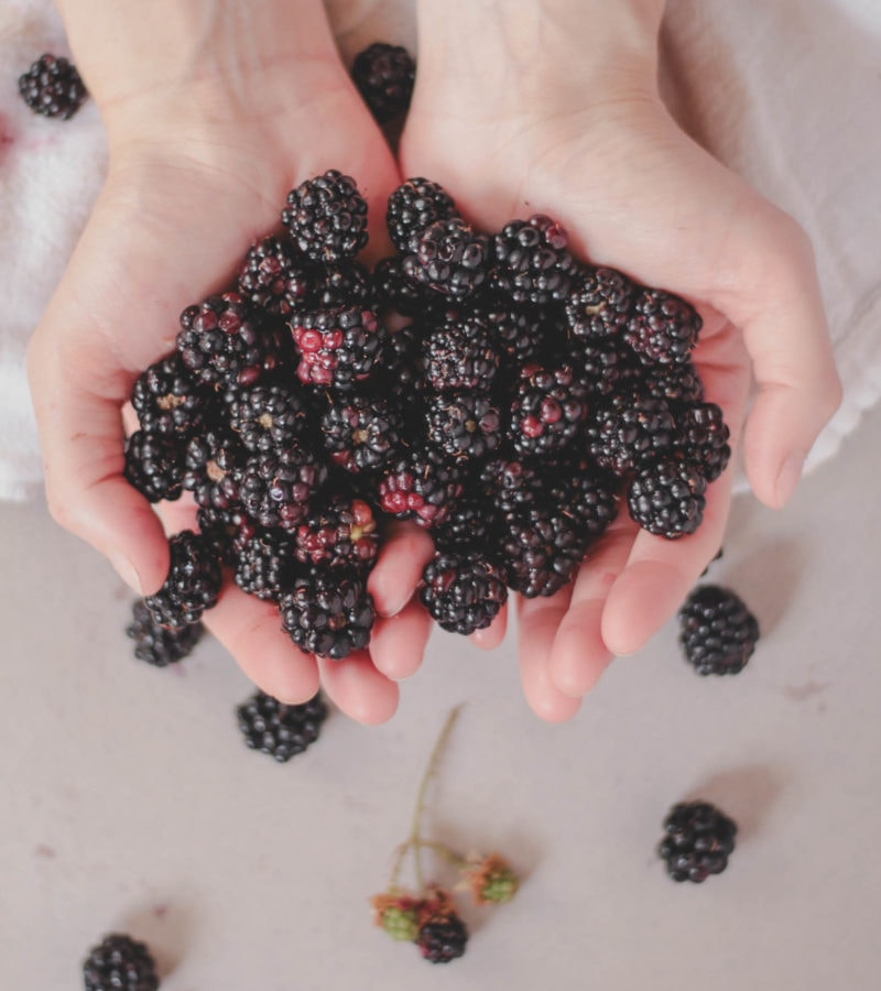 blackberries in hand