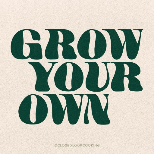Grow Your Own Insta