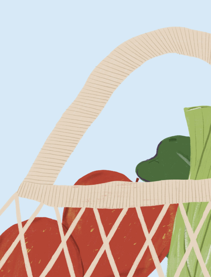 produce in a mesh bag illustration