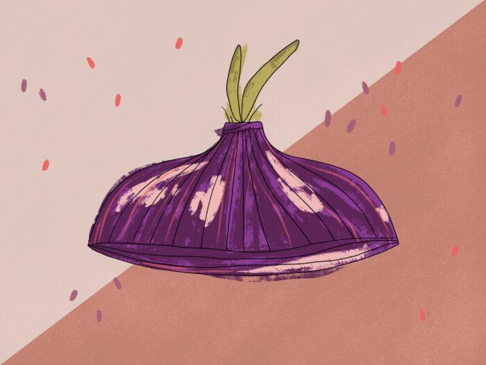 onion growth illustration