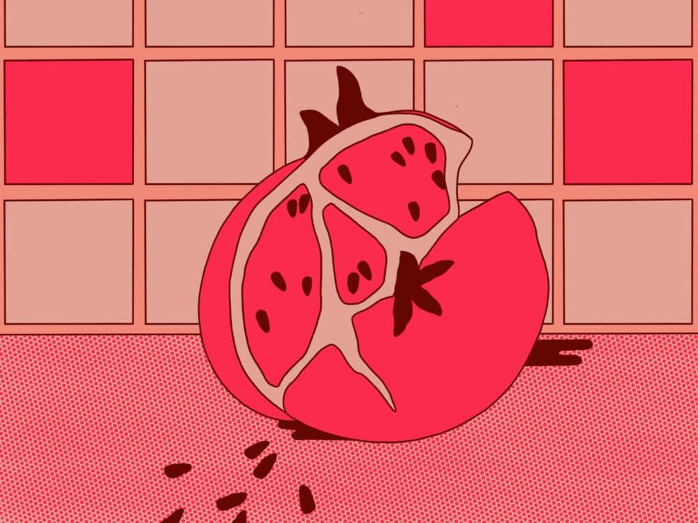 abstract pomegranate illustration