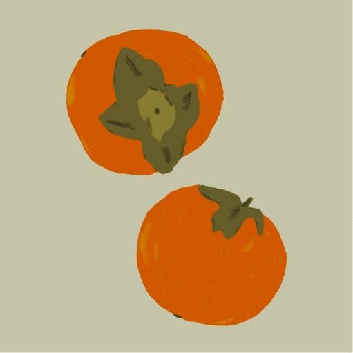 Tomato Illustration Insta